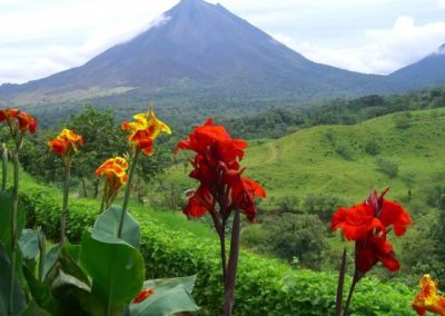 One Day Arenal Volcano Tour Costa Rica