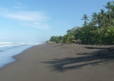 Pacific Coast Tours Costa Rica